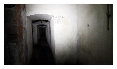 WW1 - Die Kammern