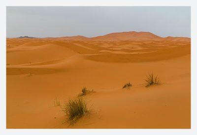 Die Dünen von Erg Chebbi