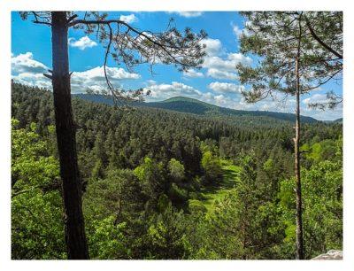 Ramberg und der Dahner Felsenpfad - weitere Ausblicke
