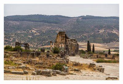 Volubilis - Basilika mit Blick auf die Olivenhaine an den Hängen der umliegenden Hügel