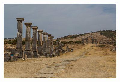 Volubilis - Säulen entlang der Hauptstrasse