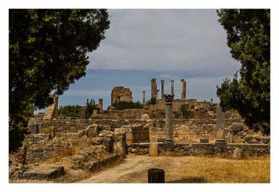 Volubilis - Erster Blick auf das Kapitol
