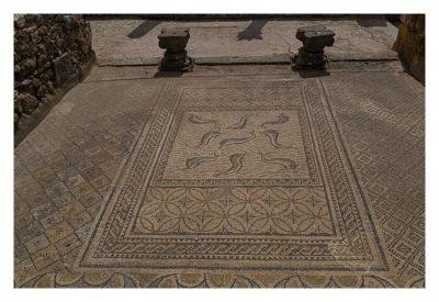 Volubilis - Mosaik auf dem Fußboden einer römischen Villa