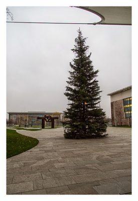 Mit dem Berufsgeocacher ins Bundeskanzleramt - Weihnachtsbaum im Ehrenhof