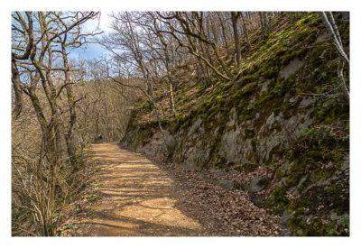 Ältester Geocache Deutschlands - Waldweg zur Burg