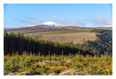 Wicklow-Mountain: schneebedeckte Hügel