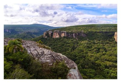 Natur pur im Pirituba Canyon - Mit Palmen