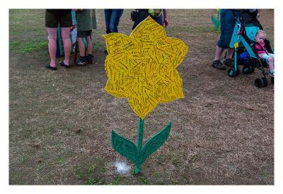 UK Mega 2016 in North Wales - Logbuch - Eine Holzblume