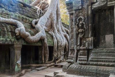 Geocaching in Kambodscha: Auf den Spuren von Lara Croft