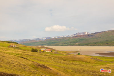 Island-4-49.jpg