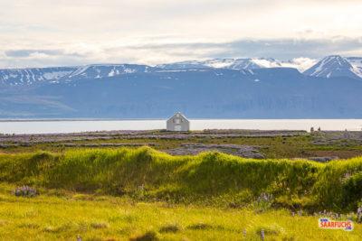Island-5-83.jpg
