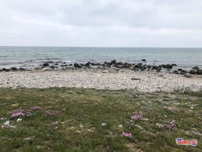 Blick über die Küste zum Meer
