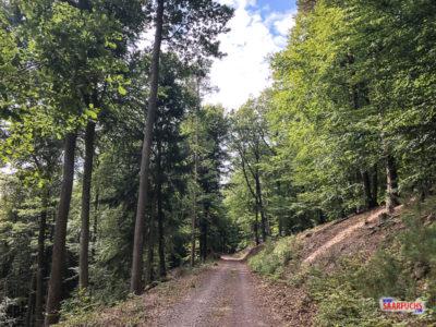 Wanderweg Ewiger Weg in Ramberg