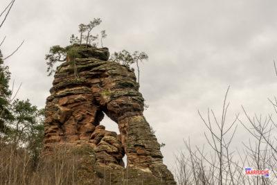Dahner Felsenpfad: Das Wander-Highlight der Region