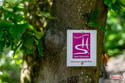 Geocaching & Wandern: Die Litermont-Gipfel-Tour
