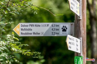 Wandermulti: Dem Wolf auf der Spur