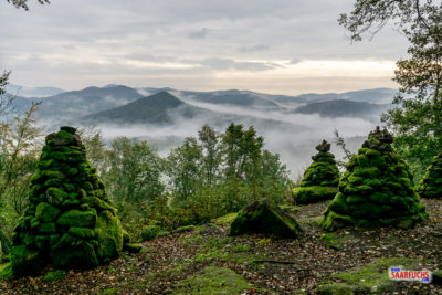 Geocaching & Wandern: Busenberger Holzschuhpfad
