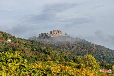 Geocaching & Wandern: Von St. Martin über die Hohe Loog zum Kalmit