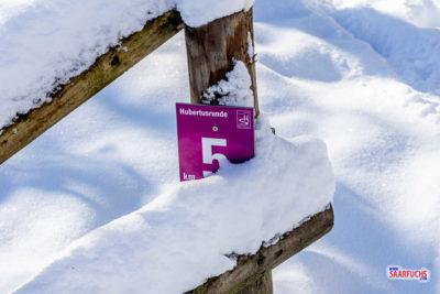 Wandermulti: Die Traumschleife Hubertusrunde im Schnee