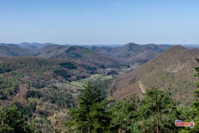 Wandermulti: Pfälzerwald Durchquerung I