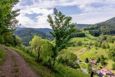 Ein verlängertes Wanderwochenende im Schwarzwald